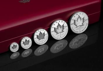 LS-Silver-Maple-Leaf-Fractional-Set-Lifestyle.jpg