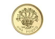 Issued in 1986 and 1991, this circulated £1 coin is part of the floral emblem series of £1 coins. The Flax plant represents Northern Ireland.