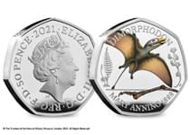 This is the official Dimorphodon 50p issued by The Royal Mint. It is the 3rd coin in the Mary Anning dinosaur collection. It is struck from .925 Silver to a Proof finish. EL 7,000