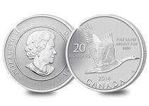 This 2014 dated coin has been struck by the Royal Canadian Mint in pure silver and features a goose design.