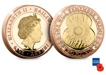 This £2 coin features a large stylised poppy encircled by a rose gold wreath and the text 'We will remember them'. The coin is struck in 22 carat gold with rose-gold feature plating.