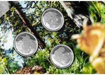 This Dinosaurs of Canada Set features 3 25-cent coins each celebrating Canada's prehistoric past. The set features the Albertosaurus, Edmontonia and Pachyrhinosaurus dinosaurs, 3D pop-up packaging.